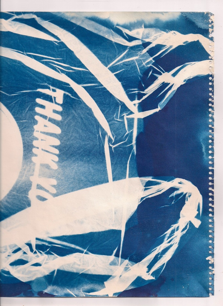 Alyssa Anderson _Litter (Cyanotype 2019)_